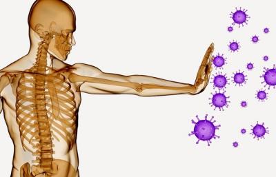 Terapia neural alicante y sistema inmunitario