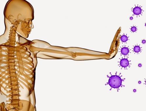 Micro-Inmunoterapia: Equilibrio para el sistema inmunitario